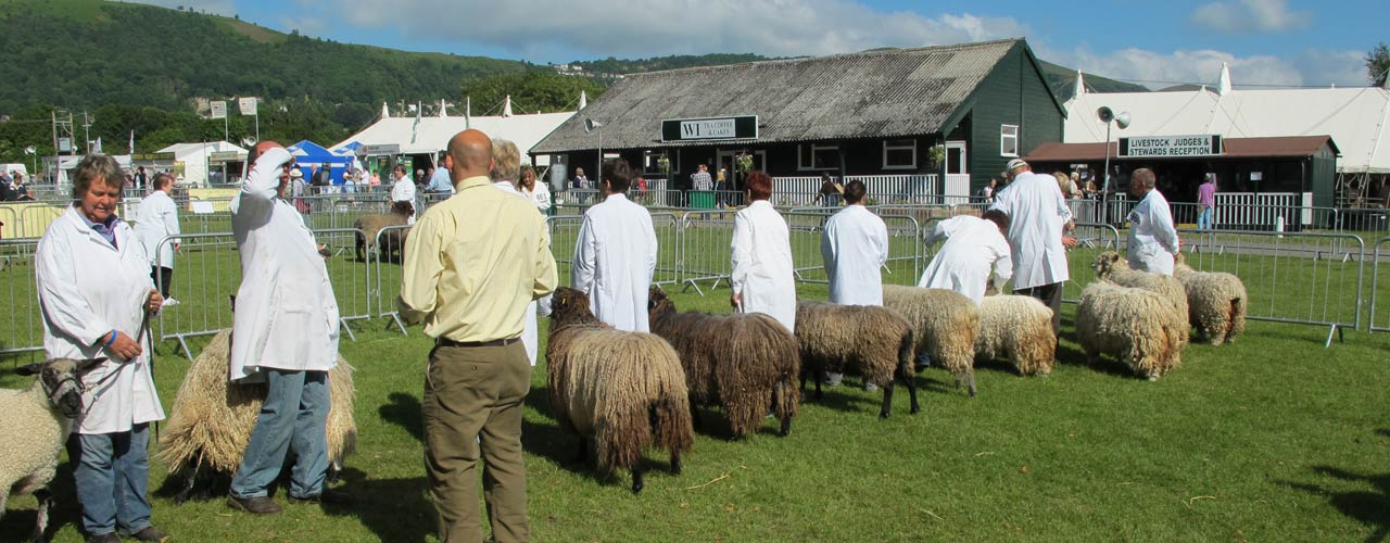 Leicester Longwool Sheep Breeders Association Events